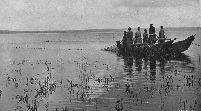 История рыболовства и Рыбной слободы в Галиче с конца XVIII до середины XX веков